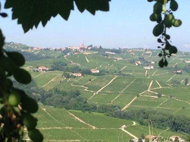 Langes Weekend im Piemont?
